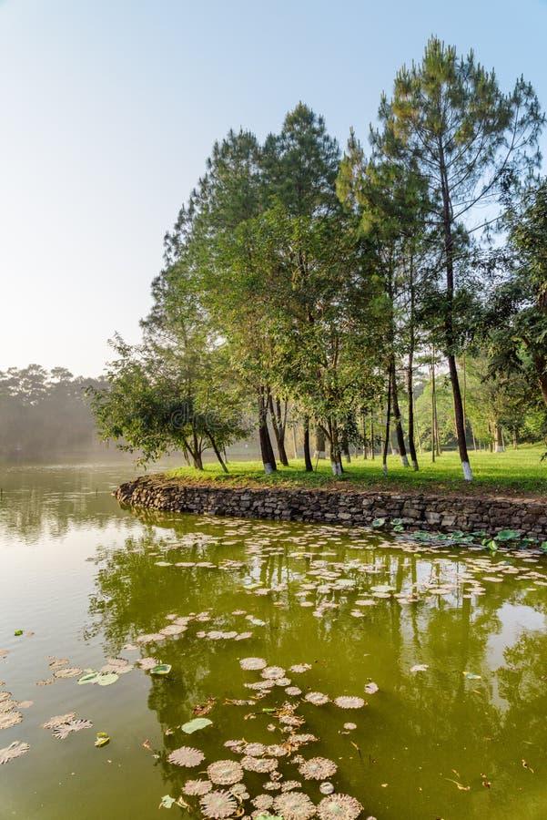 Vue scénique de beau lac en parc le jour d'été images stock