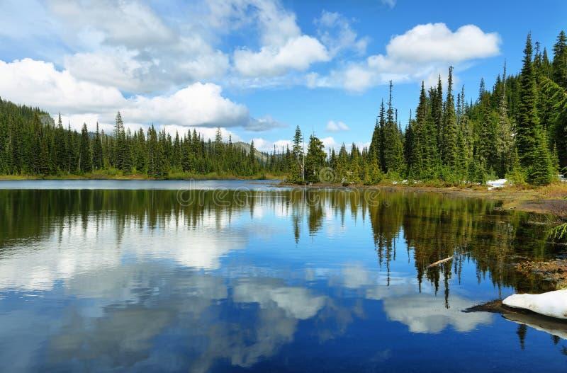 Vue scénique de lac de réflexion en mont Rainier photo libre de droits