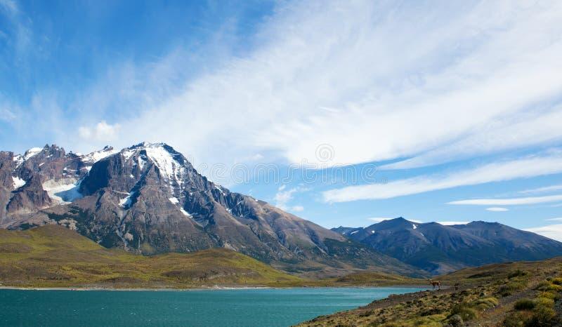 Vue scénique de lac Pehoe en Torres del Paine photos stock