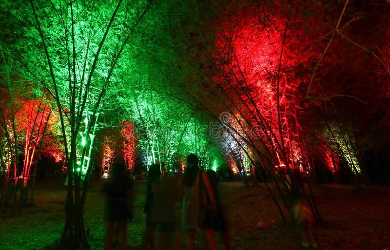 Vue scénique de nuit de l'arcade en bambou lumineuse images libres de droits