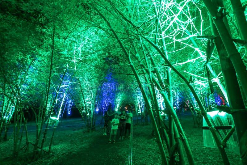 Vue scénique de nuit de l'arcade en bambou lumineuse image stock