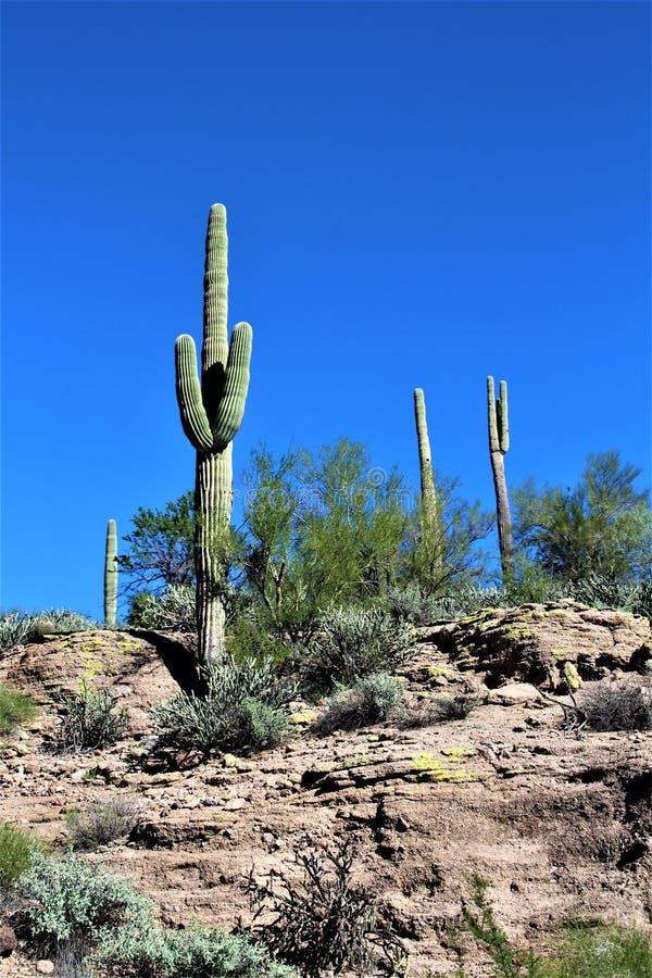 Vue scénique de paysage du MESA, Arizona aux collines de fontaine, le comté de Maricopa, Arizona, Etats-Unis image stock