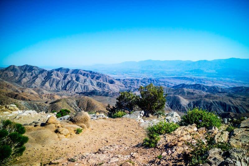 Vue scénique de Ryan Mountain en Joshua Tree National Park, la Californie images stock