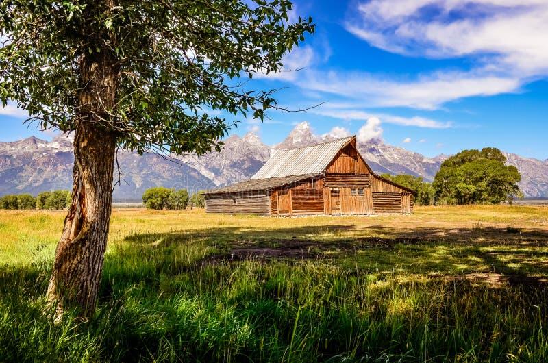 Vue scénique de Teton grand avec la vieux ferme et arbre en bois image libre de droits