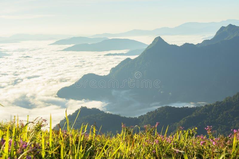 Vue Scénique Du Ciel Du Matin Foggy Avec Soleil Levant Au-Dessus De La Montagne Misty images libres de droits