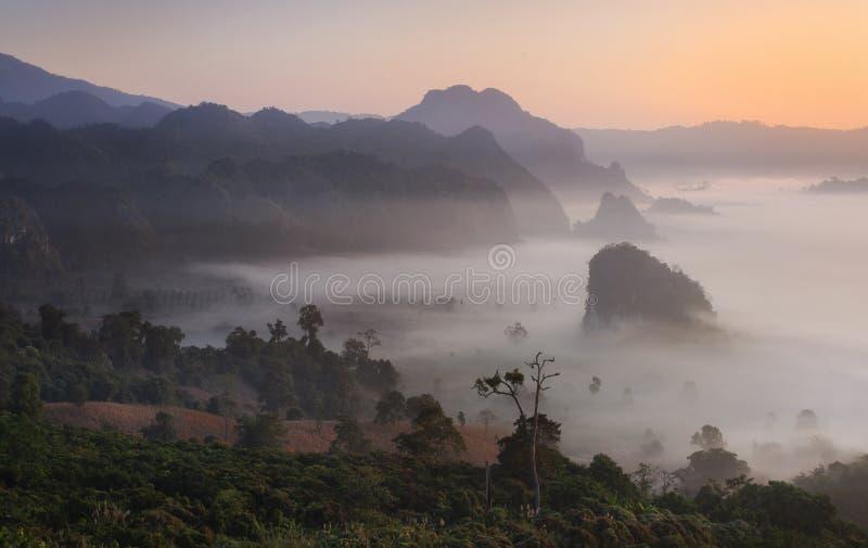 Vue scénique et brouillard de paysage de montagne sur la colline en ka Forest Park pendant le lever de soleil, point de repère na photo libre de droits