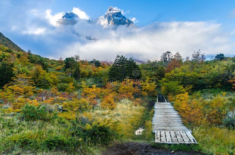 Vue scénique sur le voyage de Torres del Paine images libres de droits
