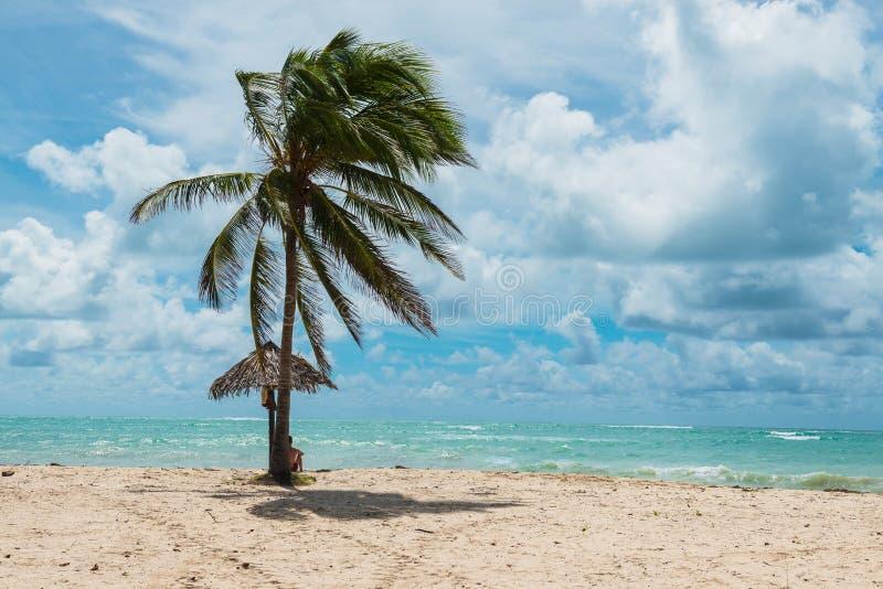 Vue spectaculaire à la plage sablonneuse tropicale avec des palmiers, Trinidad, Cuba, Caraïbes images libres de droits