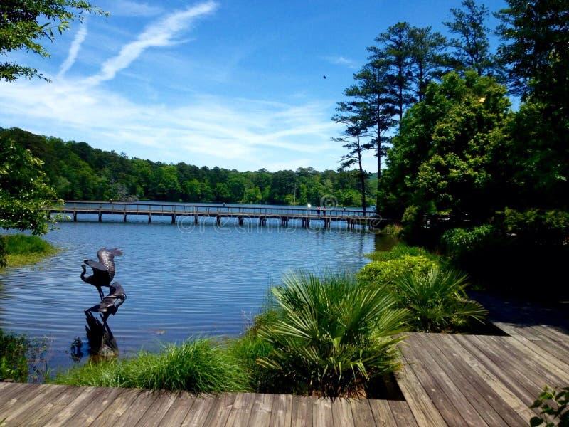 Vue spectaculaire de lac photos libres de droits