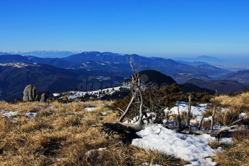 Vue spectaculaire du haut des montagnes de Ciucas, Roumanie photographie stock libre de droits