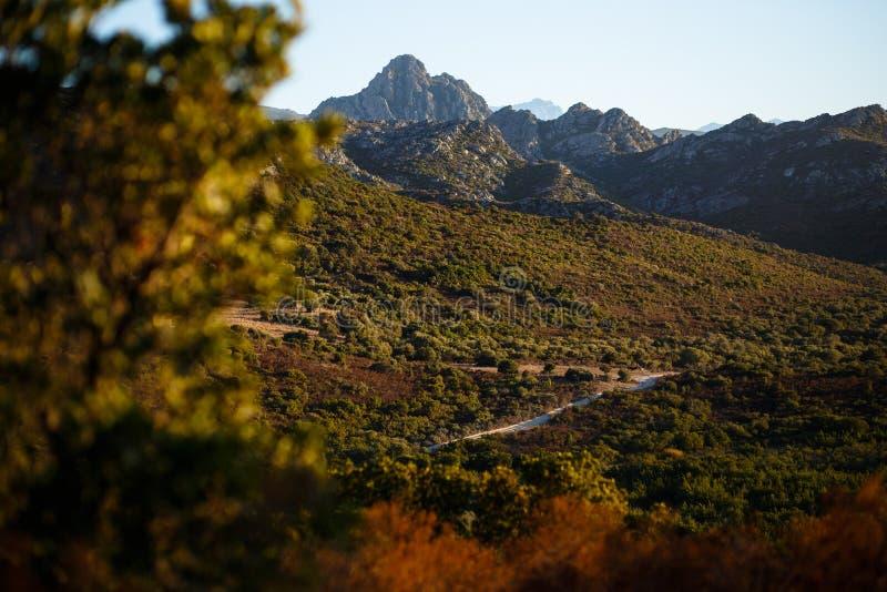 Vue stupéfiante des montagnes de l'île de Corse, France Vue horizontale images libres de droits