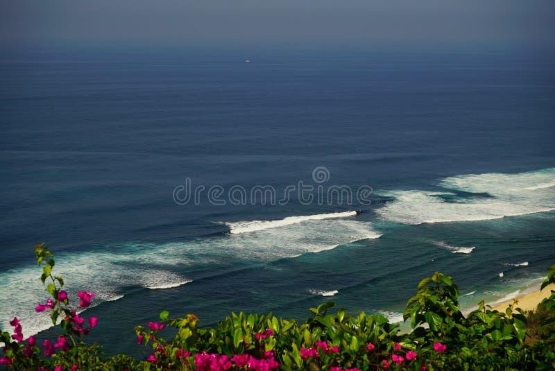 Vue supérieure au-dessus des fleurs roses sur la mer photographie stock