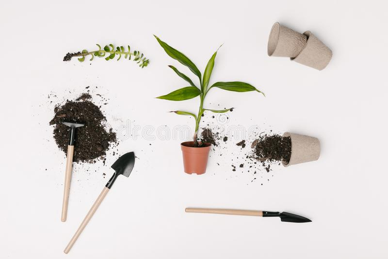 vue supérieure d'équipement de jardinage disposé, de pots de fleurs et de plantes vertes photographie stock