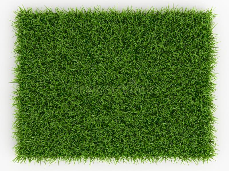 Vue supérieure d'herbe verte de ressort frais - fond naturel illustration libre de droits