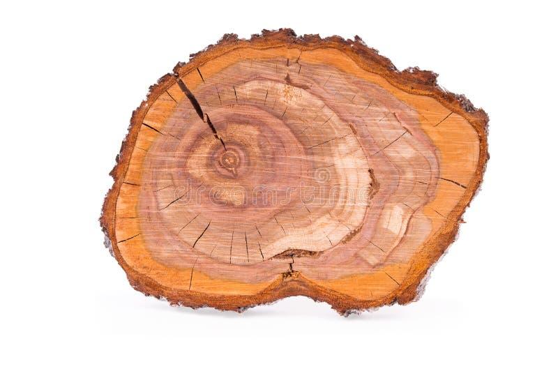 Vue supérieure d'un tronçon de prune d'arbre découpé en tranches d'isolement dessus photographie stock