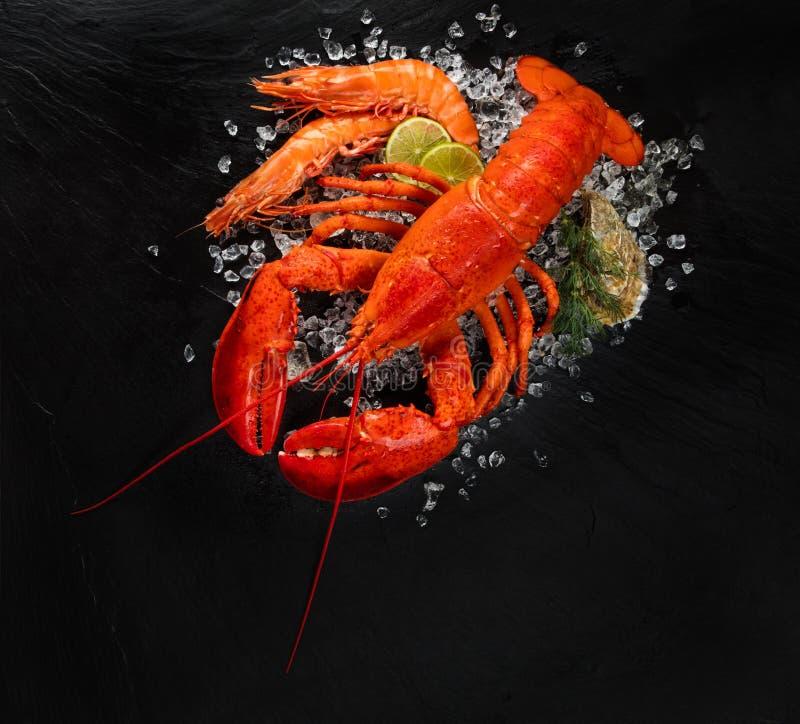 Vue supérieure de homard rouge entier sur la glace écrasée avec les crevettes roses et l'huître photo libre de droits