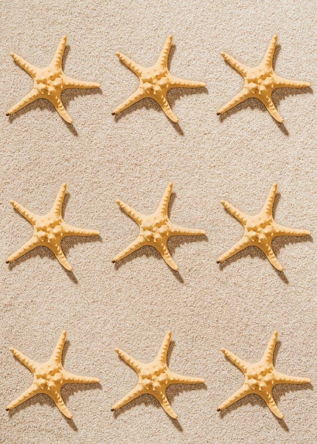 vue supérieure de la répétition des étoiles de mer photos stock