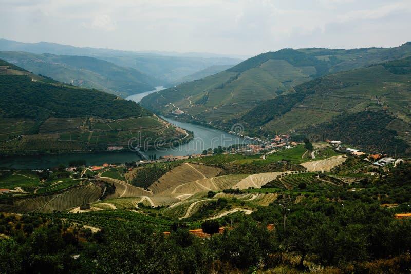 Vue supérieure de rivière dans la vallée de Douro et les vignobles, Porto photos stock