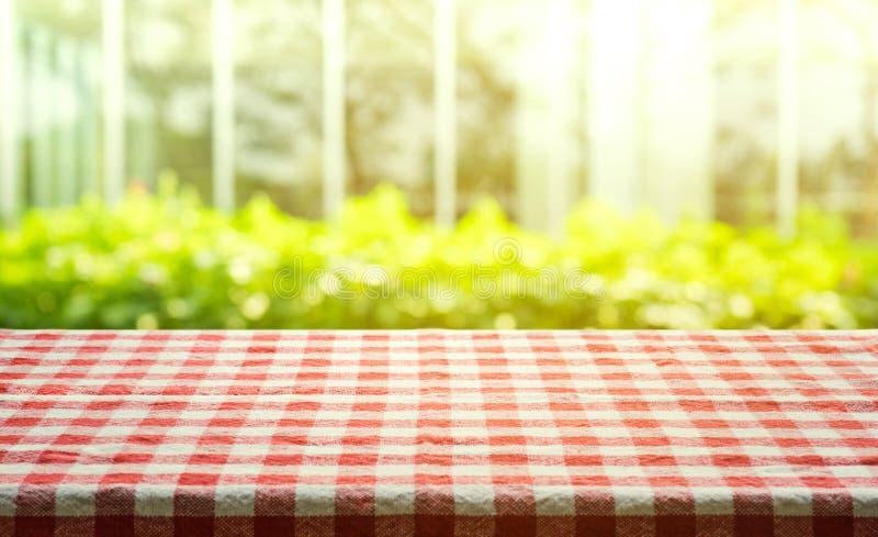 Vue supérieure de texture à carreaux rouge de nappe avec le vert abstrait du jardin photos libres de droits