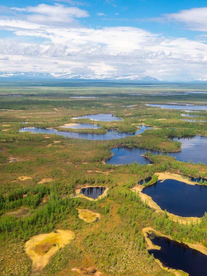 Vue supérieure de toundra Beau paysage, panorama image stock