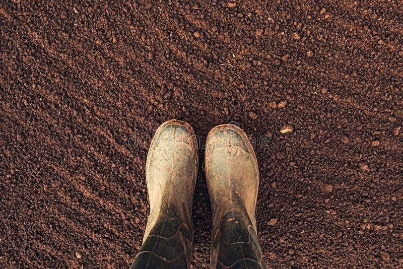 Vue supérieure des bottes en caoutchouc d'agriculteur sur les terres arables labourées image libre de droits
