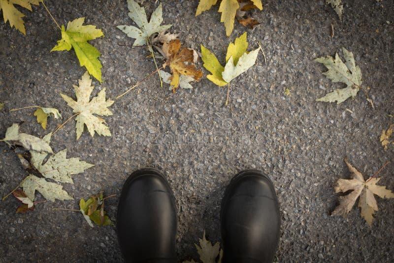 Vue supérieure des bottes en caoutchouc noires sur l'au sol tombé de feuilles images libres de droits