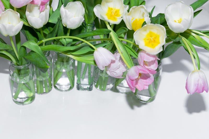 Vue supérieure des bouquets des tulipes dans des pots en verre sur un fond blanc photo libre de droits