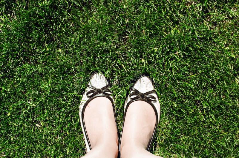 Vue sup?rieure des chaussures beiges des femmes qui se tiennent sur l'herbe coup?e verte photos libres de droits