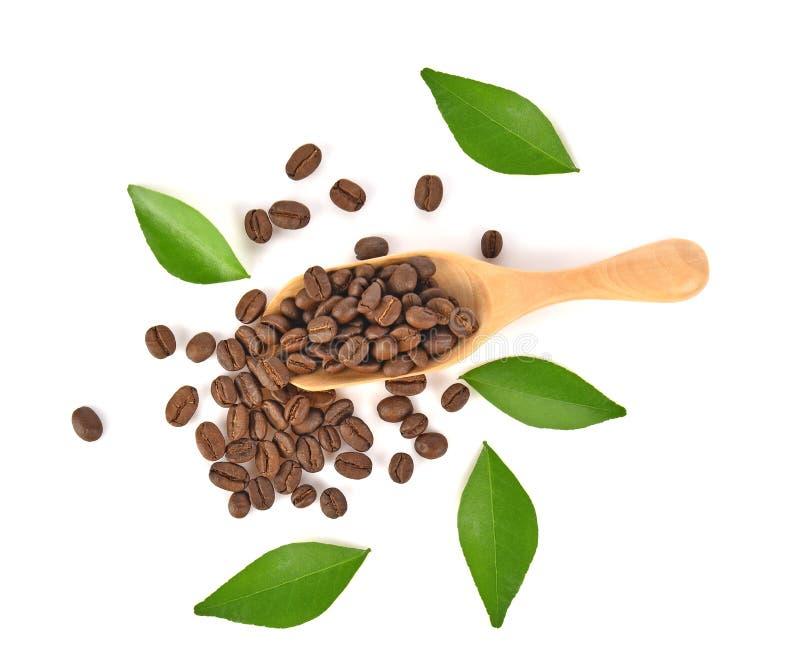 Vue supérieure des grains de café dans la cuillère en bois sur le fond blanc image libre de droits