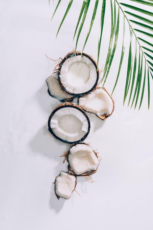 vue supérieure des morceaux de noix de coco saine naturelle et de palmettes vertes photographie stock libre de droits