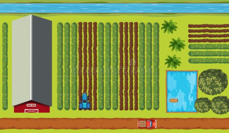 Vue supérieure des terres cultivables avec des cultures illustration de vecteur