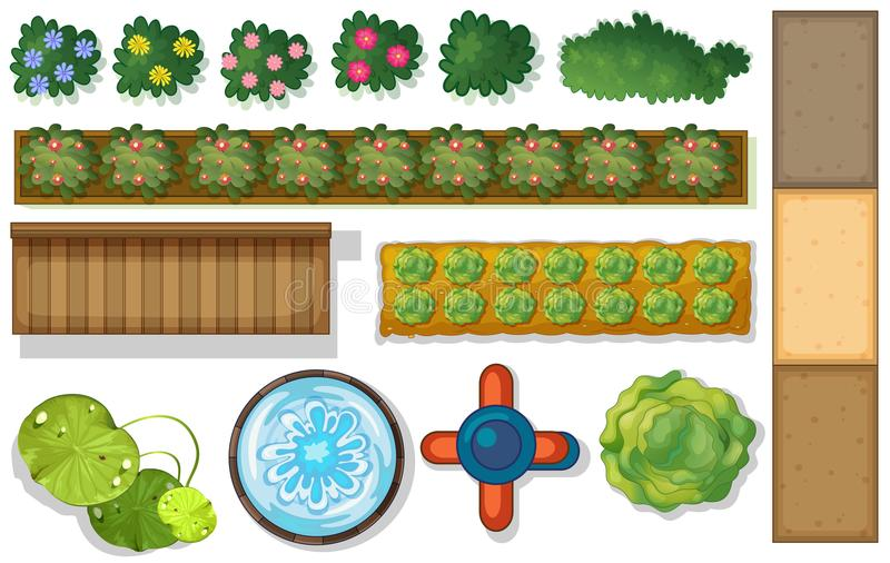 Vue supérieure des usines et de l'étang dans le jardin illustration de vecteur