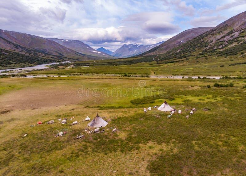 Vue supérieure du camp des bergers nomades de renne, Yama images stock