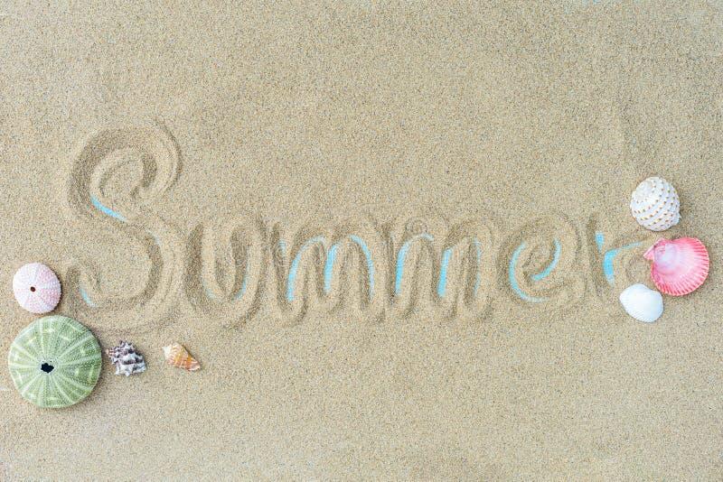 Vue supérieure du sable de plage avec des coquilles Fond d'?t? photos libres de droits