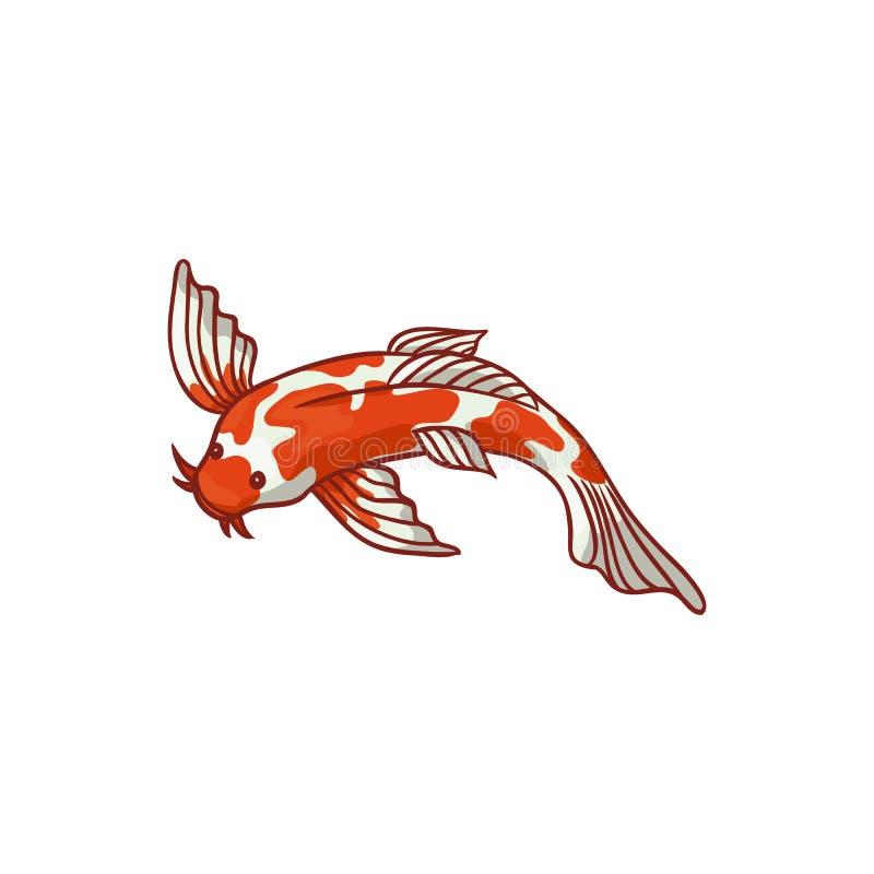 Carpe Asiatique De Goldfish De Koi Illustration de Vecteur ...