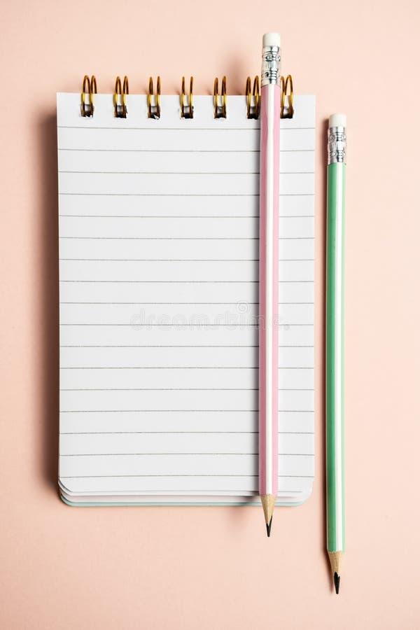Vue sup?rieure de carnet vide avec le stylo pelucheux dr?le sur le fond en pastel rose avec l'espace de copie, composition vertic photographie stock libre de droits