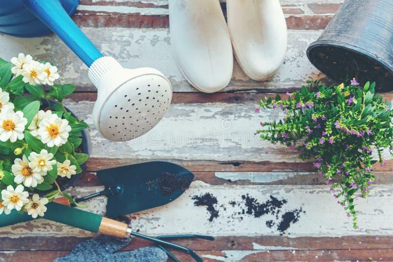 Vue sup?rieure sur faire du jardinage une pelle remplie d'outil mis en pot de sol et de fleurs pendant le printemps d'?t? de jard photographie stock libre de droits