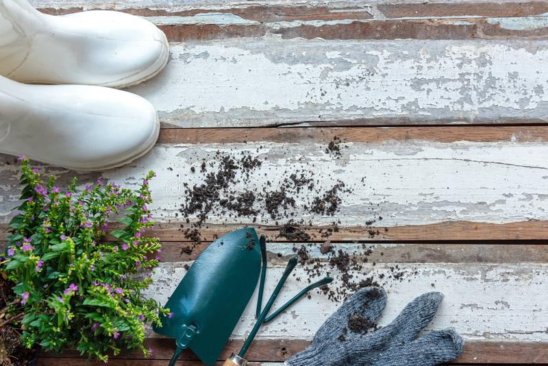 Vue sup?rieure sur faire du jardinage une pelle remplie d'outil mis en pot de sol et de fleurs pendant le printemps d'?t? de jard photo libre de droits