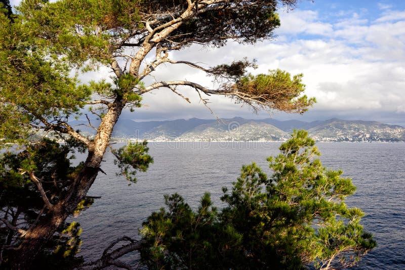 Vue sur la baie de mer près de la ville de Portofino en Ligurie, Italie images libres de droits