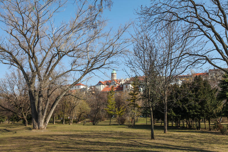 Vue sur la colline de Buda par les arbres images libres de droits