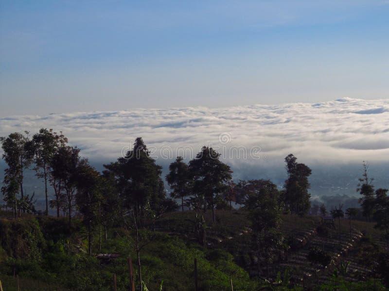 Vue sur la nature chez Temanggung Java Indonesia central photos libres de droits