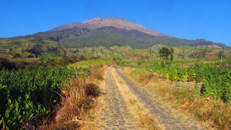 Vue sur la route rocheuse qui mène sur les pentes du mont Sumbing photo stock