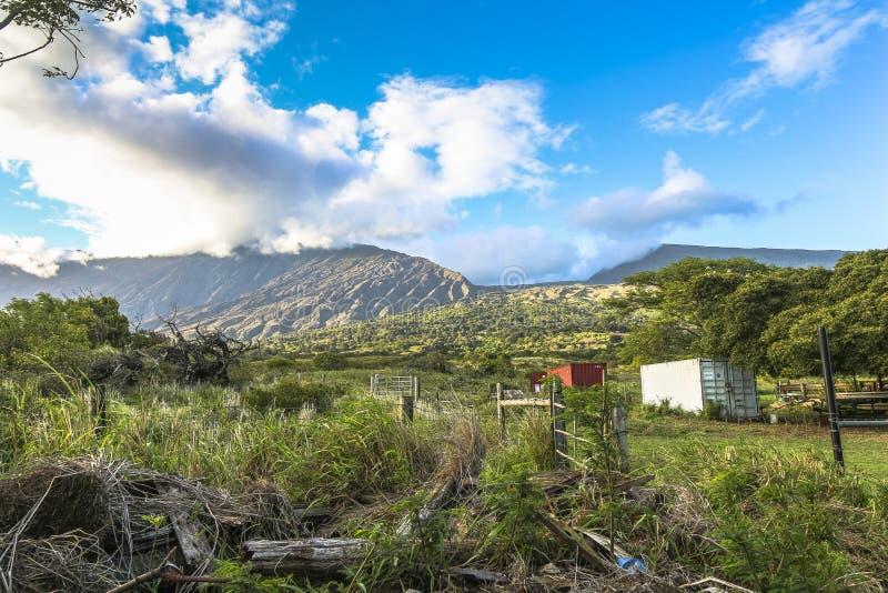 Vue sur le paysage rural de l'île de Maui, Hawaï image stock