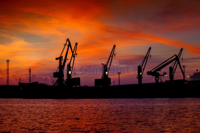 Vue sur le port maritime avec des grues au coucher du soleil Panorama de soirée du port de cargaison image libre de droits
