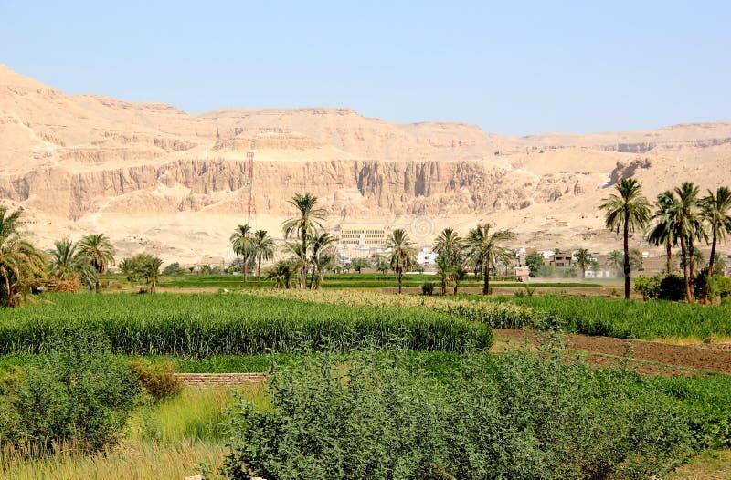 Vue sur le temple de Hatshepsut. images libres de droits