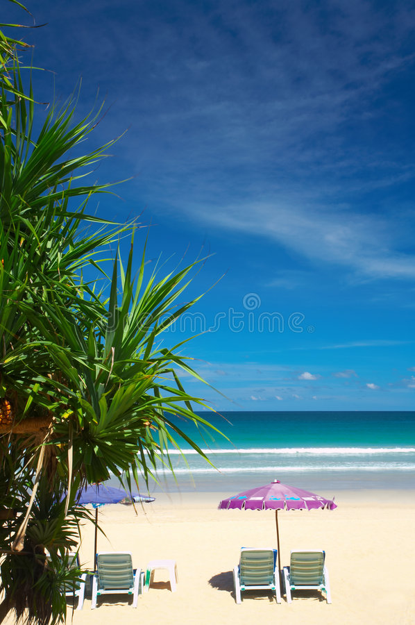 Vue tropicale images stock