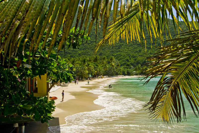 Vue tropicale image stock