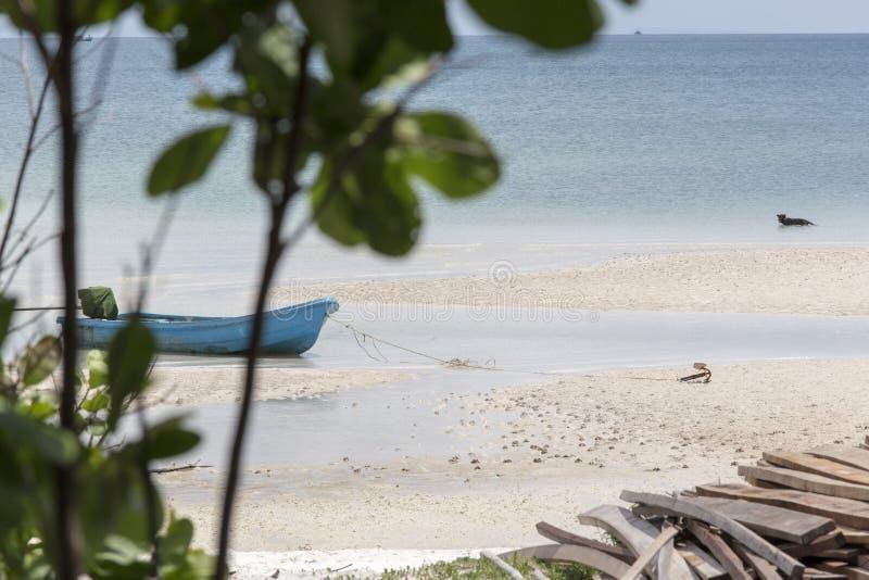 Vue tropicale de plage images libres de droits