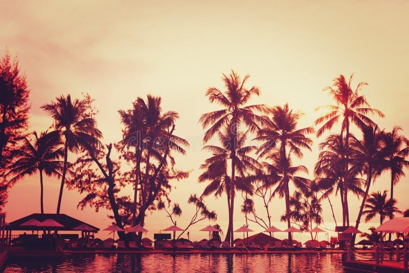 Vue tropicale de plage Palmier et ciel rouge de coucher du soleil images stock