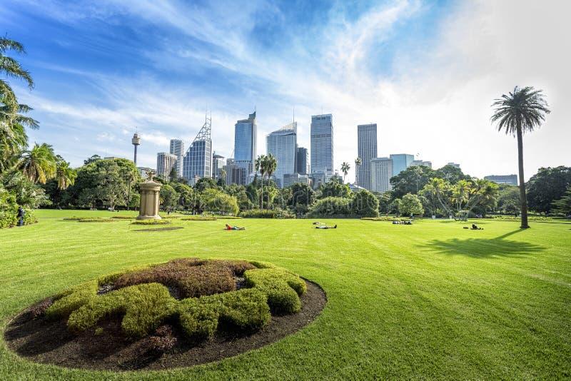 Vue verte de Sydney de ville dans le jardin botanique royal photo stock